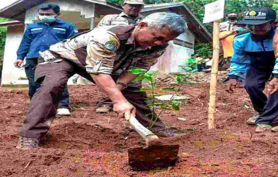 Bupati Ketapang Lakukan Penanaman Padi Serentak di Kawasan Pampang Seribu