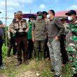 Bupati Martin Tinjau Langsung ke Lokasi Tanggul Air Asin yang Jebol di Desa Tempurukan